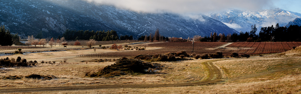 Panorama Central Otago Vineyards