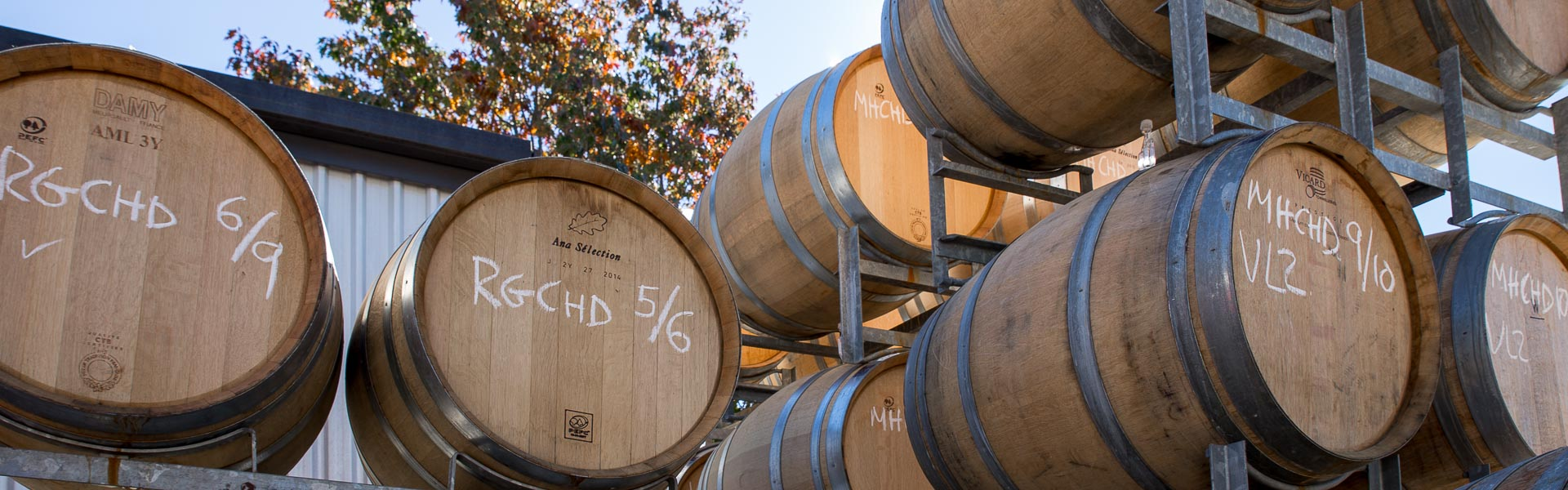 Barrels at Neudorf Vineyards, Nelson
