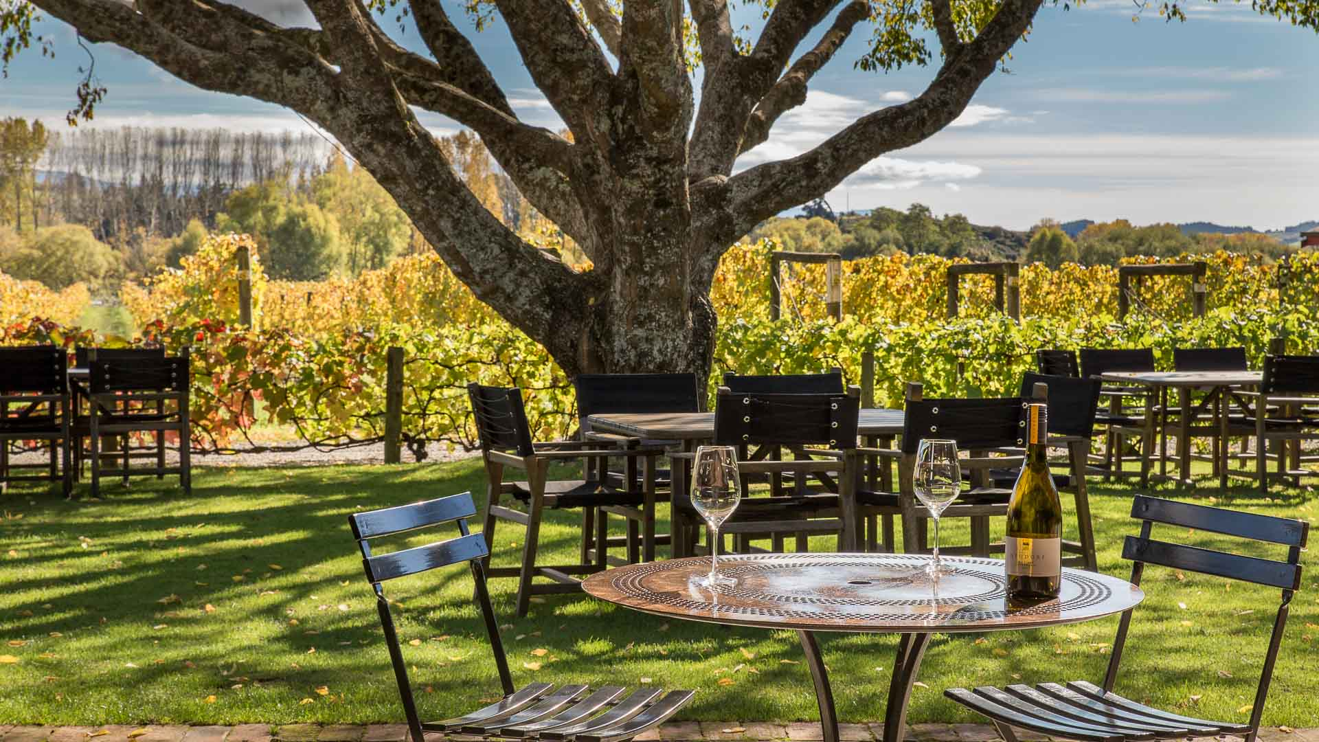 Gardens at Neudorf Vineyard, Nelson, New Zealand