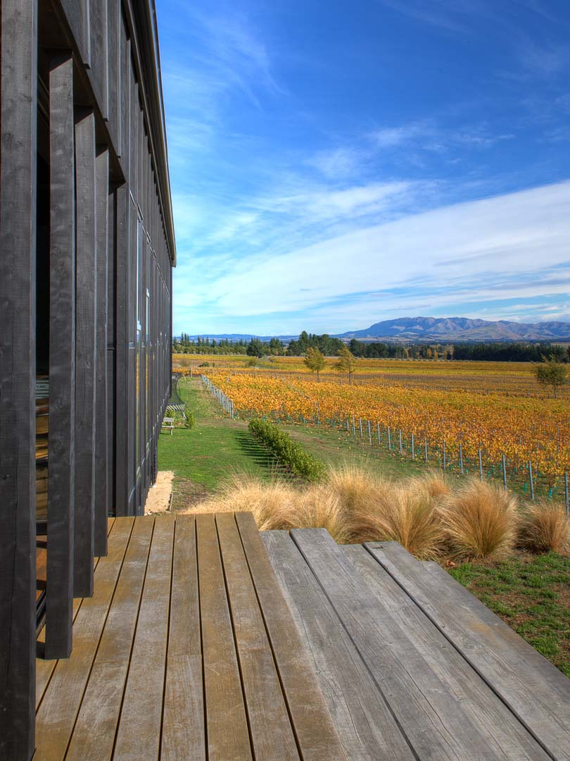 Black Estate Vineyard Waipara