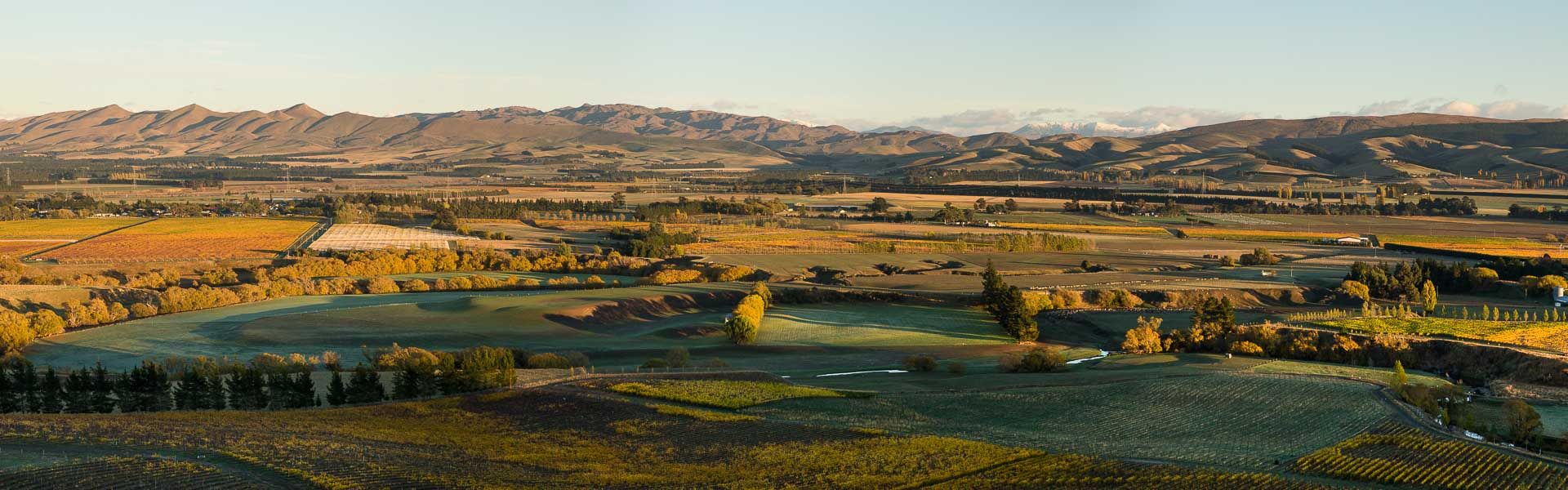 Waipara-Wine-New Zealand